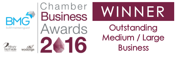 Winner_Outstanding_Med_Lrg_Business (2)